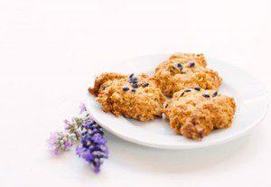 handgemaakte koekjes