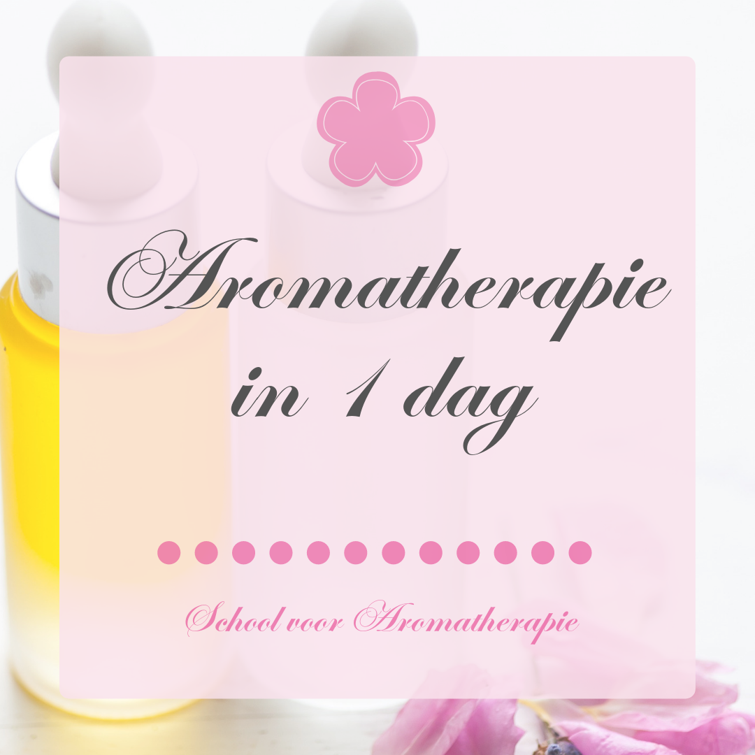 Aromatherapie in 1 dag
